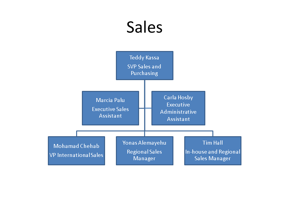 Sales Company Structure